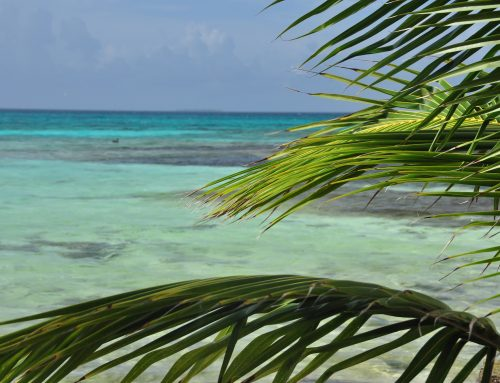 Trip Alert! Belize Travel – Hot Real Estate Opportunities